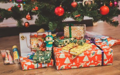 Holiday Gift Guide 2019: Early Childhood Recommendations